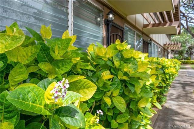 4906 Kilauea Avenue #4, Honolulu, HI 96816 (MLS #201811893) :: Keller Williams Honolulu
