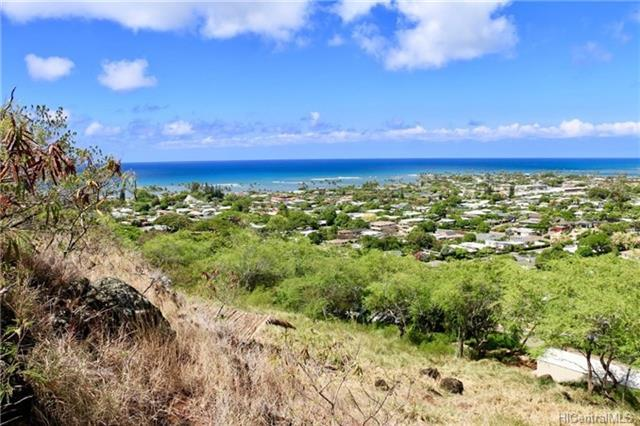 184 Puuikena Drive, Honolulu, HI 96821 (MLS #201822685) :: The Ihara Team