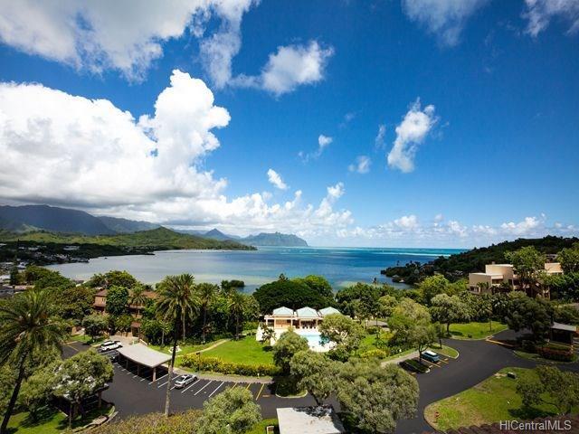 46-075 Meheanu Place #3363, Kaneohe, HI 96744 (MLS #201822754) :: Elite Pacific Properties