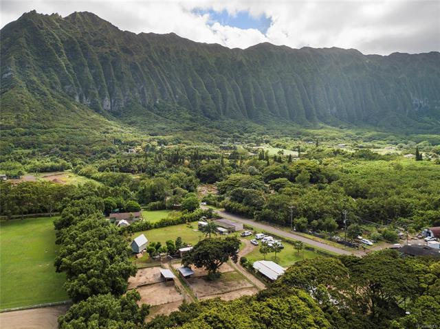 41-587 Makakalo Street, Waimanalo, HI 96795 (MLS #201825105) :: The Ihara Team