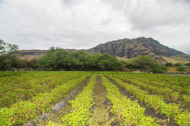 85-755 Waianae Valley Road, Waianae, HI 96792 (MLS #201827260) :: The Ihara Team