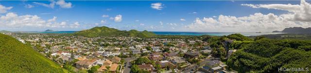 1414 Auwaiku Street, Kailua, HI 96734 (MLS #201830973) :: Yamashita Team