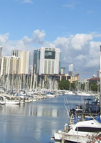 88 Piikoi Street #4503, Honolulu, HI 96814 (MLS #201900455) :: Elite Pacific Properties