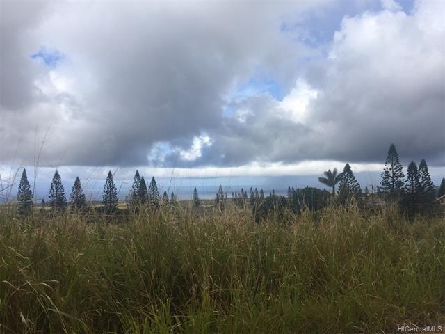 0 Linohau Street, Maunaloa, HI 96770 (MLS #201904624) :: Hardy Homes Hawaii