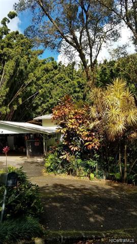 146 Kawika Place, Honolulu, HI 96822 (MLS #201905617) :: Keller Williams Honolulu