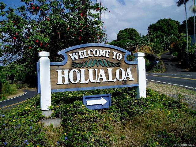 47 Heahea Ridge, Kailua-Kona, HI 96740 (MLS #201905710) :: The Ihara Team