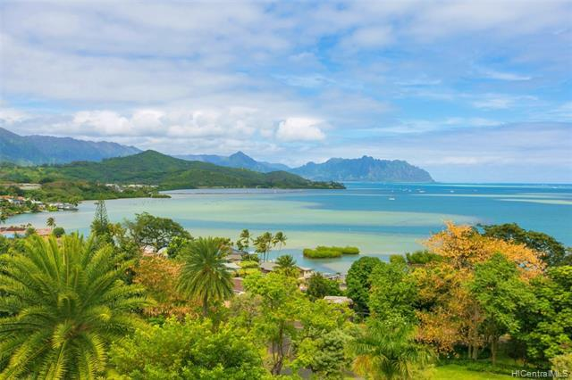 46-159 Meheanu Loop #3251, Kaneohe, HI 96744 (MLS #201905824) :: Keller Williams Honolulu