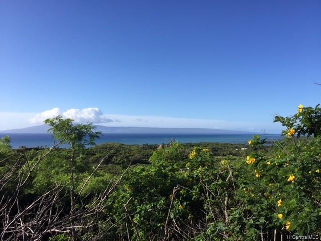 Kamehameha V Kamehameha V Highway, Kaunakakai, HI 96748 (MLS #201907086) :: The Ihara Team