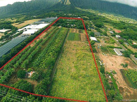 41-450 Hihimanu Street, Waimanalo, HI 96795 (MLS #201908859) :: The Ihara Team