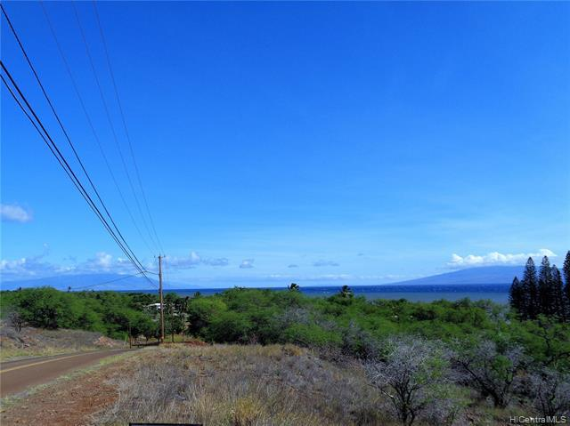 81 Uluanui Road Lot #111, Kaunakakai, HI 96748 (MLS #201910027) :: Hawaii Real Estate Properties.com