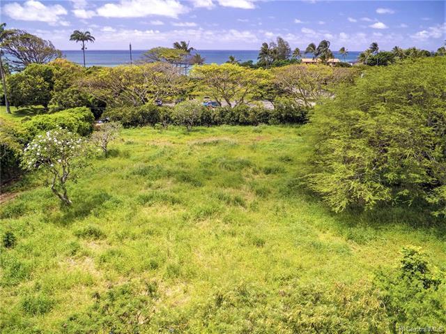 59-104A Kamehameha Highway, Haleiwa, HI 96712 (MLS #201911555) :: Barnes Hawaii