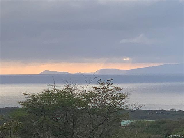 769 Pa Loa Loop, Maunaloa, HI 96770 (MLS #201914153) :: The Ihara Team