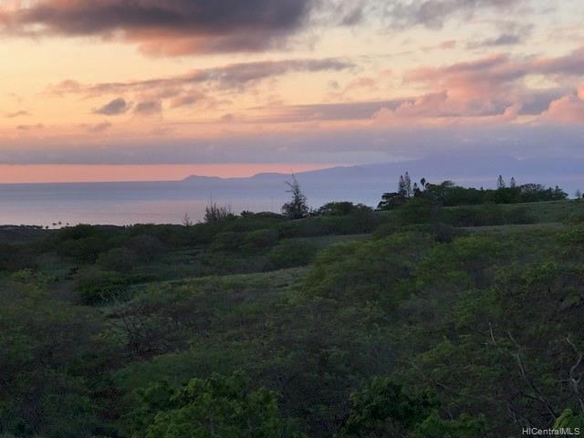 39 Kalua Koi Road, Maunaloa, HI 96770 (MLS #201917064) :: Keller Williams Honolulu