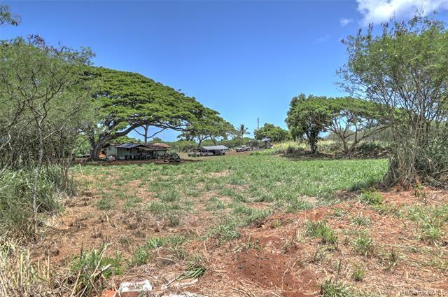 N/A Kamehameha Highway - Photo 1
