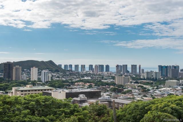 834C Alewa Drive, Honolulu, HI 96813 (MLS #201923024) :: Barnes Hawaii