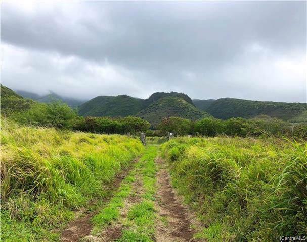 0 Kamehameha Valley, Kaunakakai, HI 96748 (MLS #201926406) :: The Ihara Team