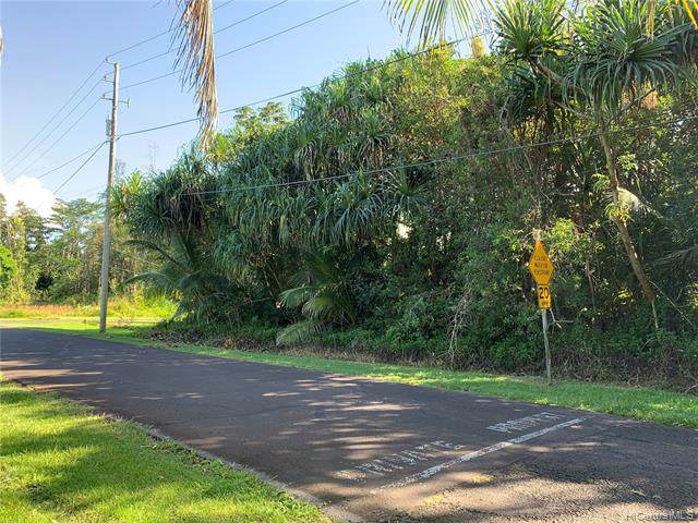 15-2778 Honu Street, Pahoa, HI 96778 (MLS #201930271) :: The Ihara Team