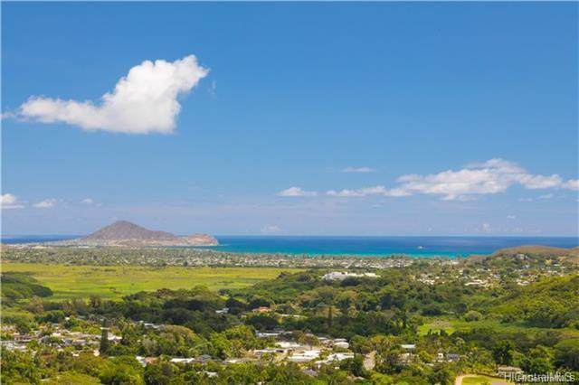 0 Lopaka Way 3,4, Kailua, HI 96734 (MLS #201930690) :: Team Lally