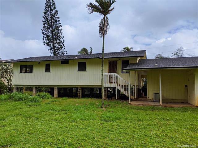 53-684 Kamehameha Highway, Hauula, HI 96717 (MLS #202000709) :: The Ihara Team