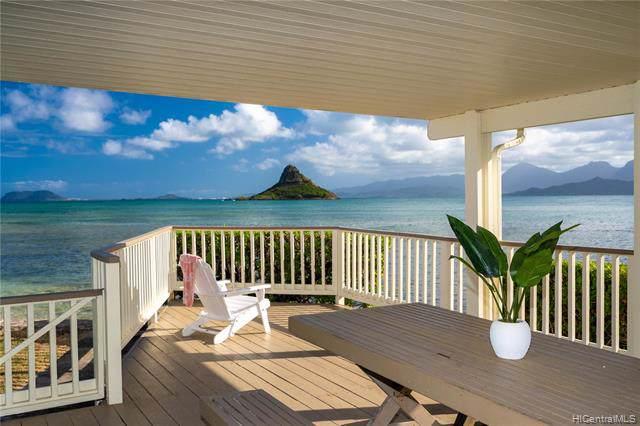 49-541 Kamehameha Highway, Kaneohe, HI 96744 (MLS #202001972) :: Keller Williams Honolulu