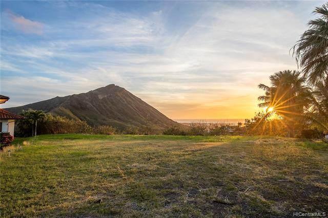 103 Hoolako Place, Honolulu, HI 96825 (MLS #202002416) :: Team Lally