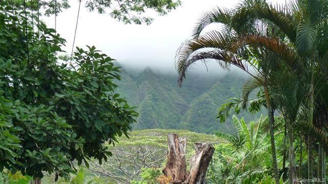 47-398 Ahaolelo Road, Kaneohe, HI 96744 (MLS #202002797) :: Island Life Homes
