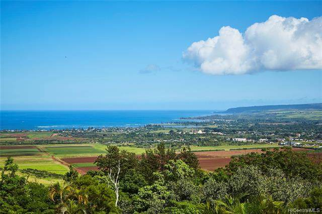 67-290 Farrington Highway, Waialua, HI 96791 (MLS #202002833) :: Keller Williams Honolulu