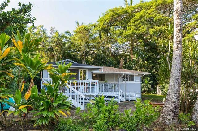 47-377 Kamehameha Highway B1, Kaneohe, HI 96744 (MLS #202002986) :: Keller Williams Honolulu