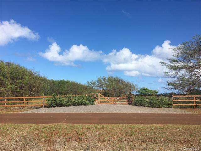 3956 Pohakuloa Road, Maunaloa, HI 96770 (MLS #202004983) :: The Ihara Team
