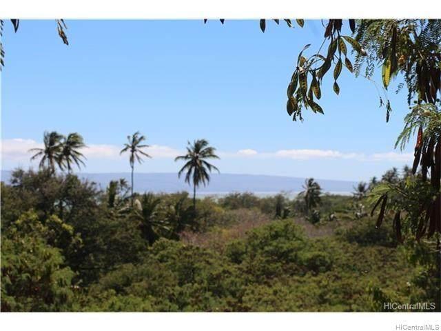 00000 E Kamehameha V Highway, Kaunakakai, HI 96748 (MLS #202007512) :: The Ihara Team