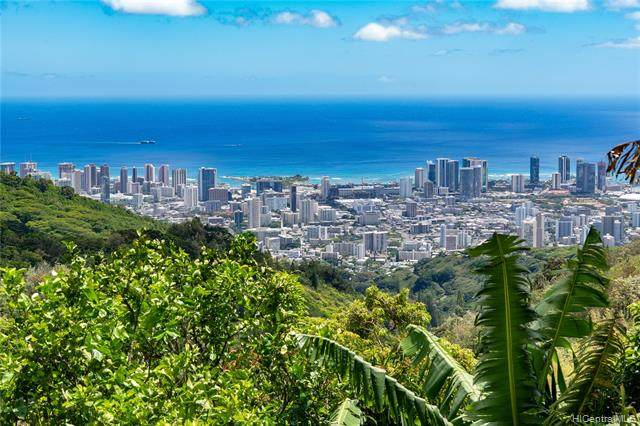 215 Forest Ridge Way, Honolulu, HI 96822 (MLS #202011412) :: The Ihara Team