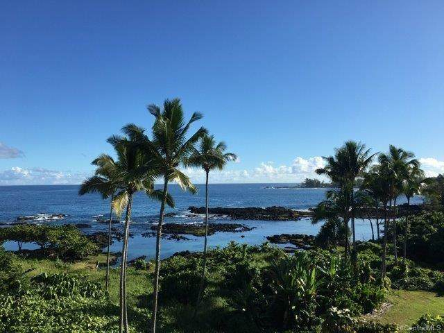 1911 Kalanianaole Avenue #607, Hilo, HI 96720 (MLS #202012594) :: Elite Pacific Properties