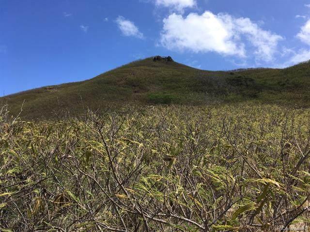 936 Apokula Street #2, Kailua, HI 96734 (MLS #202014645) :: Barnes Hawaii