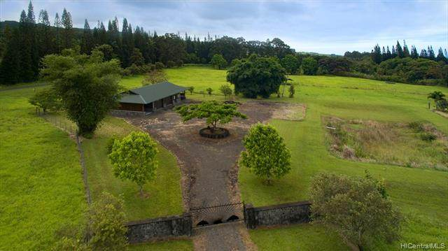 29-2400 Kaiwiki Road, Hakalau, HI 96710 (MLS #202014704) :: Elite Pacific Properties