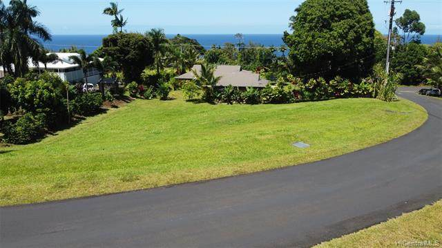 29-2276 Hanamalo Loop, Hakalau, HI 96710 (MLS #202015428) :: Elite Pacific Properties