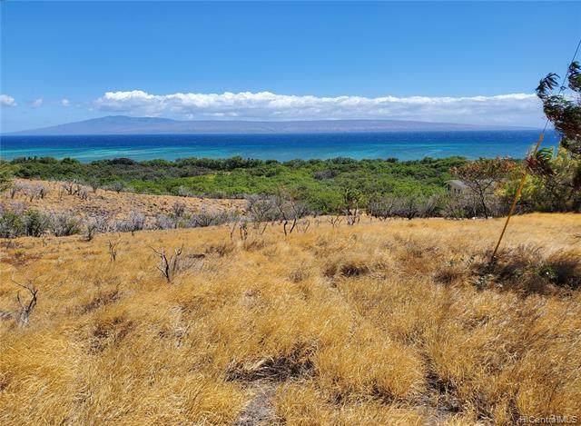 0 Onioni Drive Lot 91, Kaunakakai, HI 96748 (MLS #202015683) :: Hawai'i Life