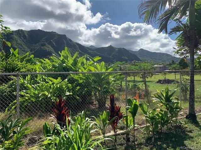 53-500 Kamehameha Highway, Hauula, HI 96717 (MLS #202018691) :: Corcoran Pacific Properties