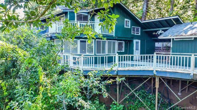 55 Lepo Place, Haiku, HI 96708 (MLS #202018816) :: Island Life Homes
