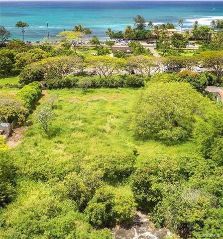 59-104A Kamehameha Highway, Haleiwa, HI 96712 (MLS #202021745) :: Corcoran Pacific Properties