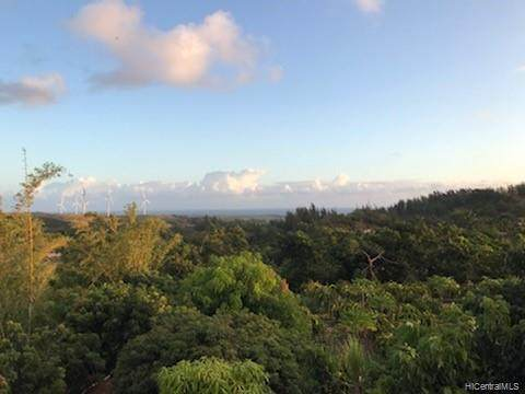56-664 Kamehameha Highway #14, Kahuku, HI 96731 (MLS #202024351) :: Barnes Hawaii
