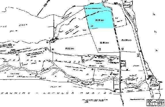 0000 Old Mamalahoa Highway, Papaaloa, HI 96780 (MLS #202024543) :: Corcoran Pacific Properties