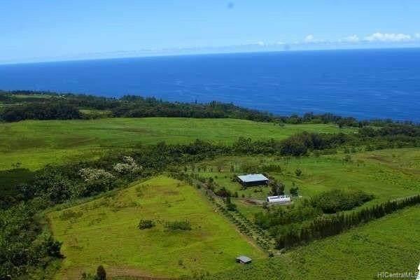 00000 Old Mamalahoa Highway, Papaaloa, HI 96780 (MLS #202024616) :: Corcoran Pacific Properties