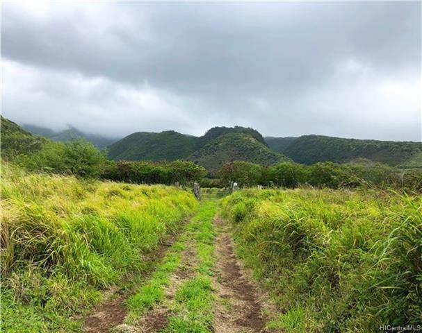 0 Kamehameha Valley, Kaunakakai, HI 96748 (MLS #202024908) :: Hawai'i Life