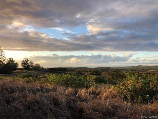 0 Kalua Koi Road, Maunaloa, HI 96770 (MLS #202027257) :: Hawai'i Life