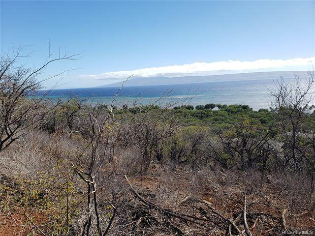 00 Uluanui Road, Kaunakakai, HI 96748 (MLS #202101295) :: Corcoran Pacific Properties