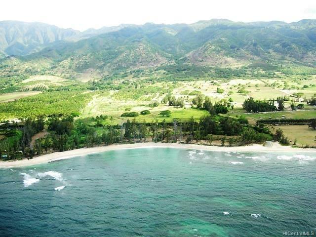 Address Not Published, Waialua, HI 96791 (MLS #202101438) :: Corcoran Pacific Properties