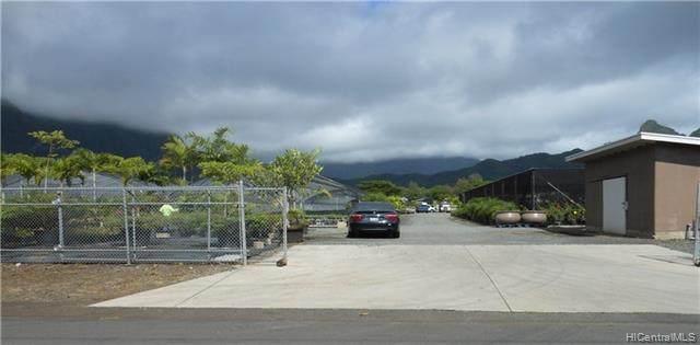 41-695 Kaulukanu Street, Waimanalo, HI 96795 (MLS #202101471) :: Barnes Hawaii