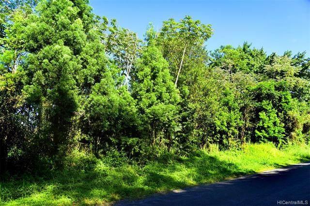 Lot 17 Railroad Road, Keaau, HI 96749 (MLS #202101945) :: Weaver Hawaii | Keller Williams Honolulu