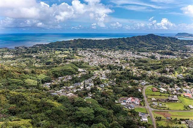 Address Not Published, Kaneohe, HI 96744 (MLS #202106900) :: LUVA Real Estate