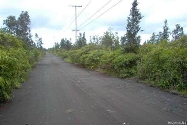 00 Ao Road, Mountain View, HI 96771 (MLS #202107929) :: Island Life Homes